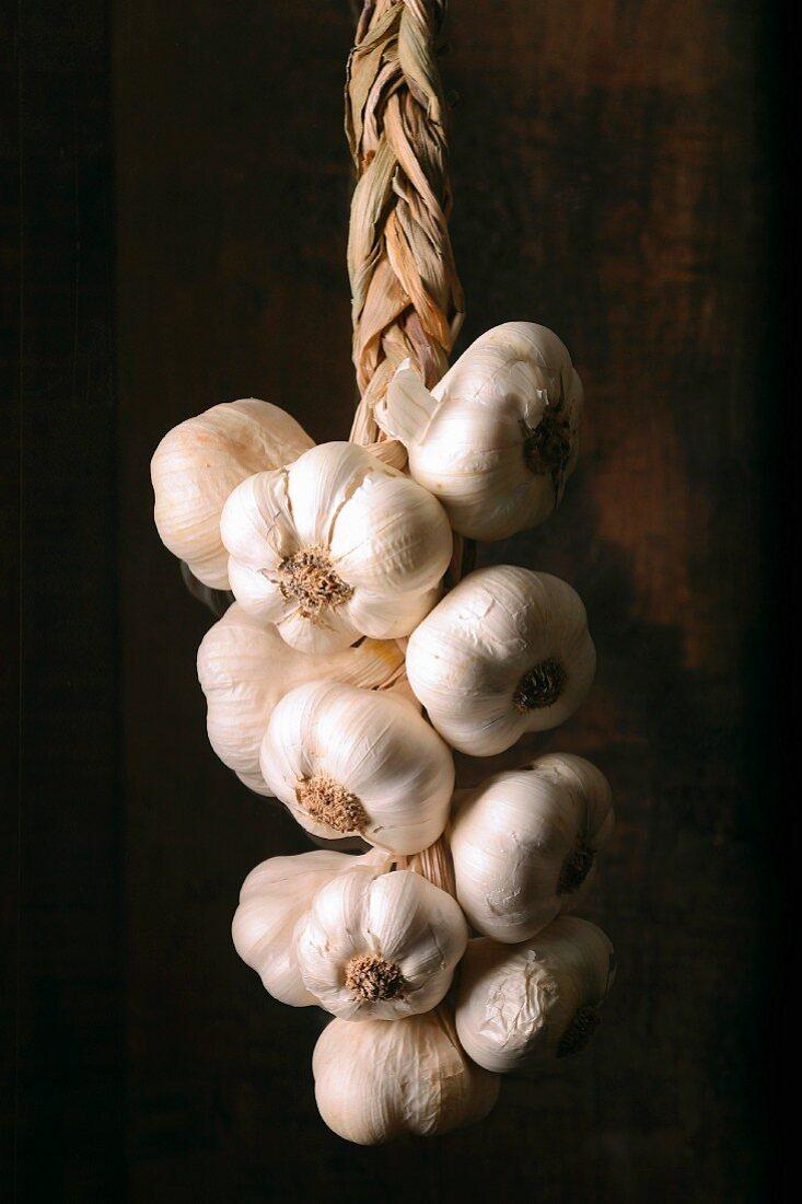 braid of garlic
