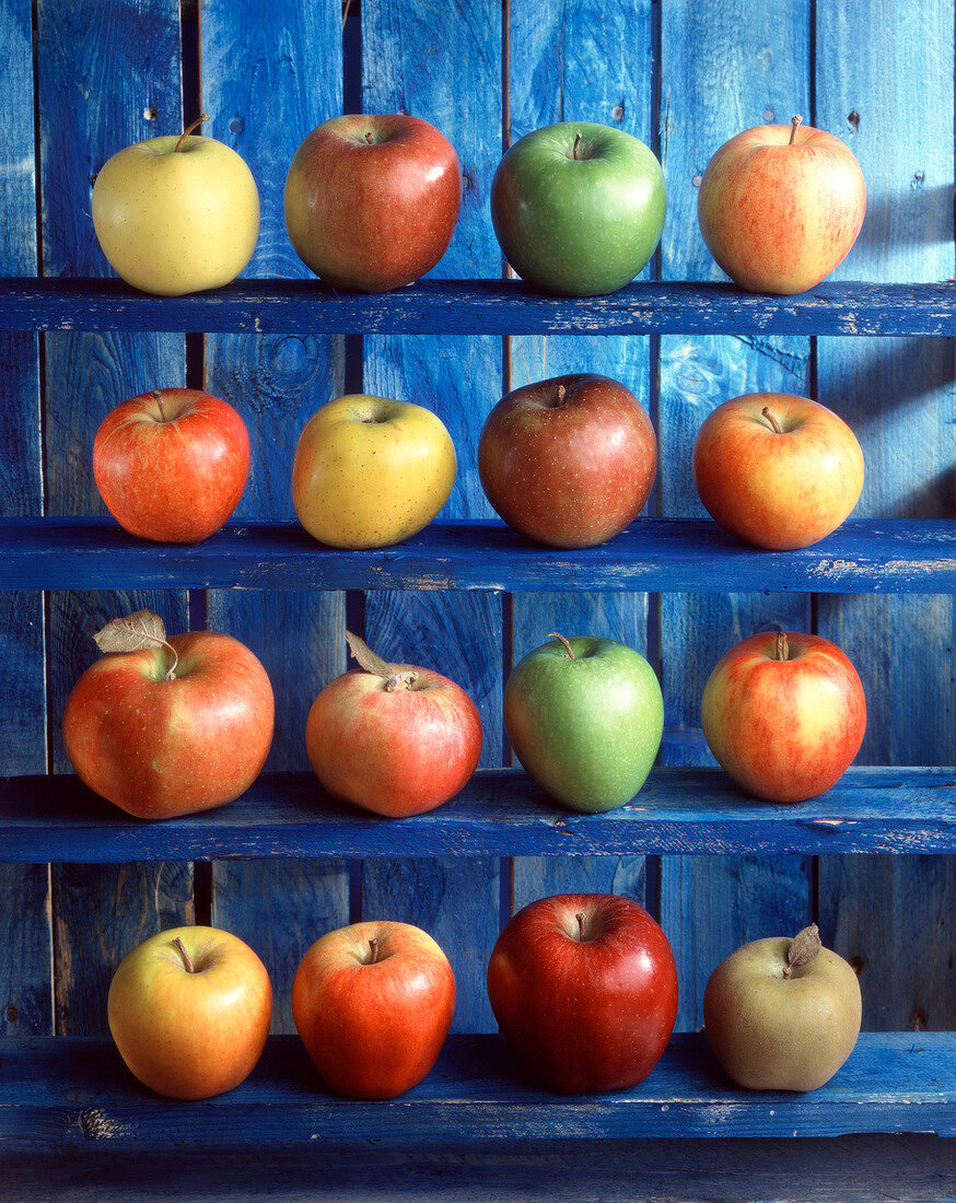 Arrangement of apples