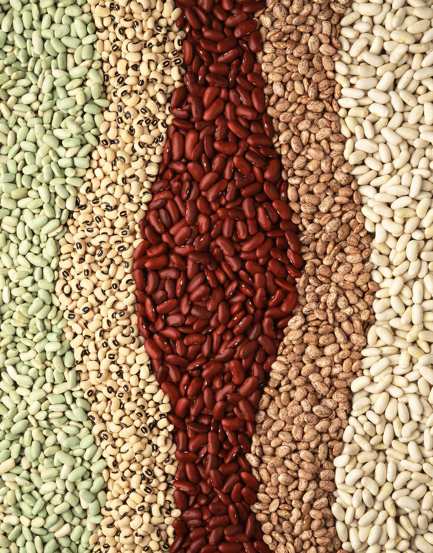 Arrangement of dried beans