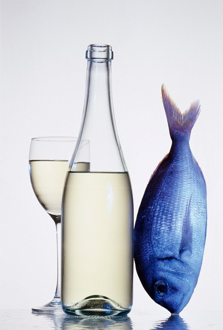 Bottle and glass of white wine with fish