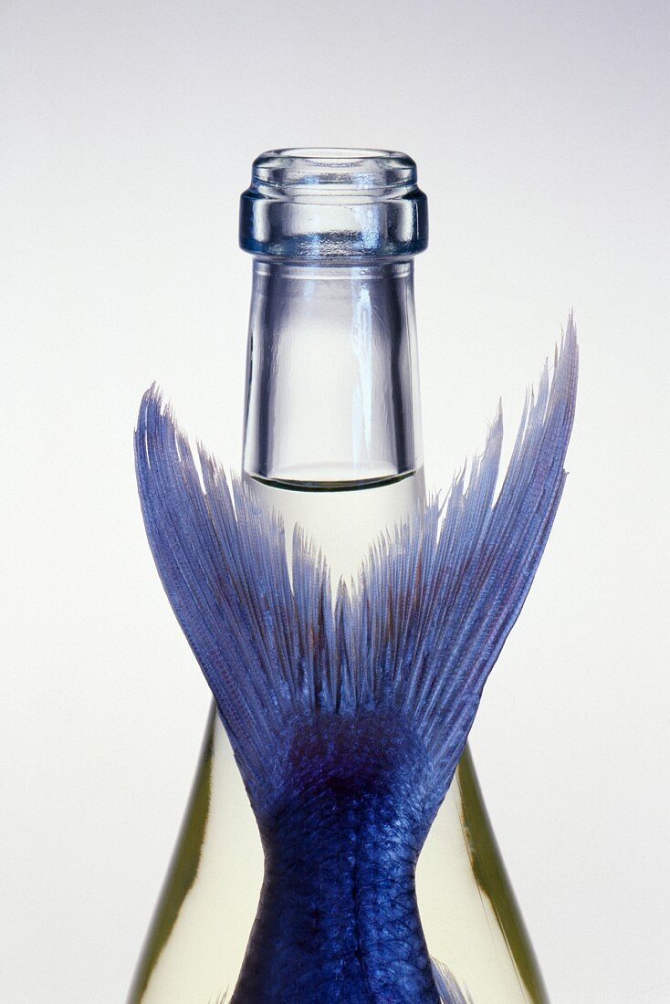 Bottle and fish tail