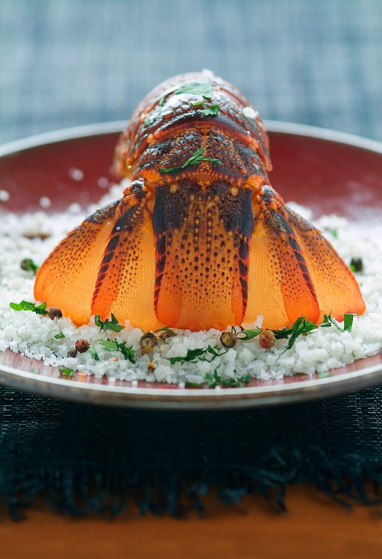 Spiny lobster's tail