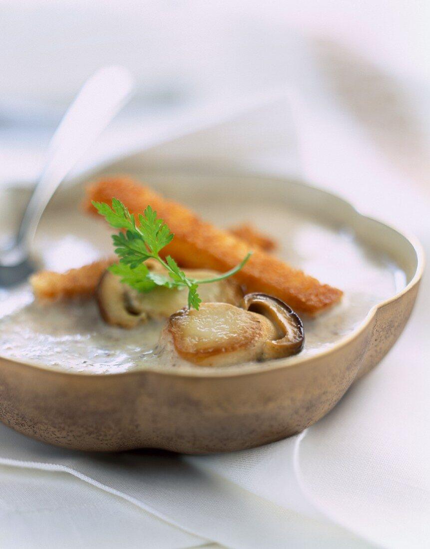 Scallop and Cep mushroom stock