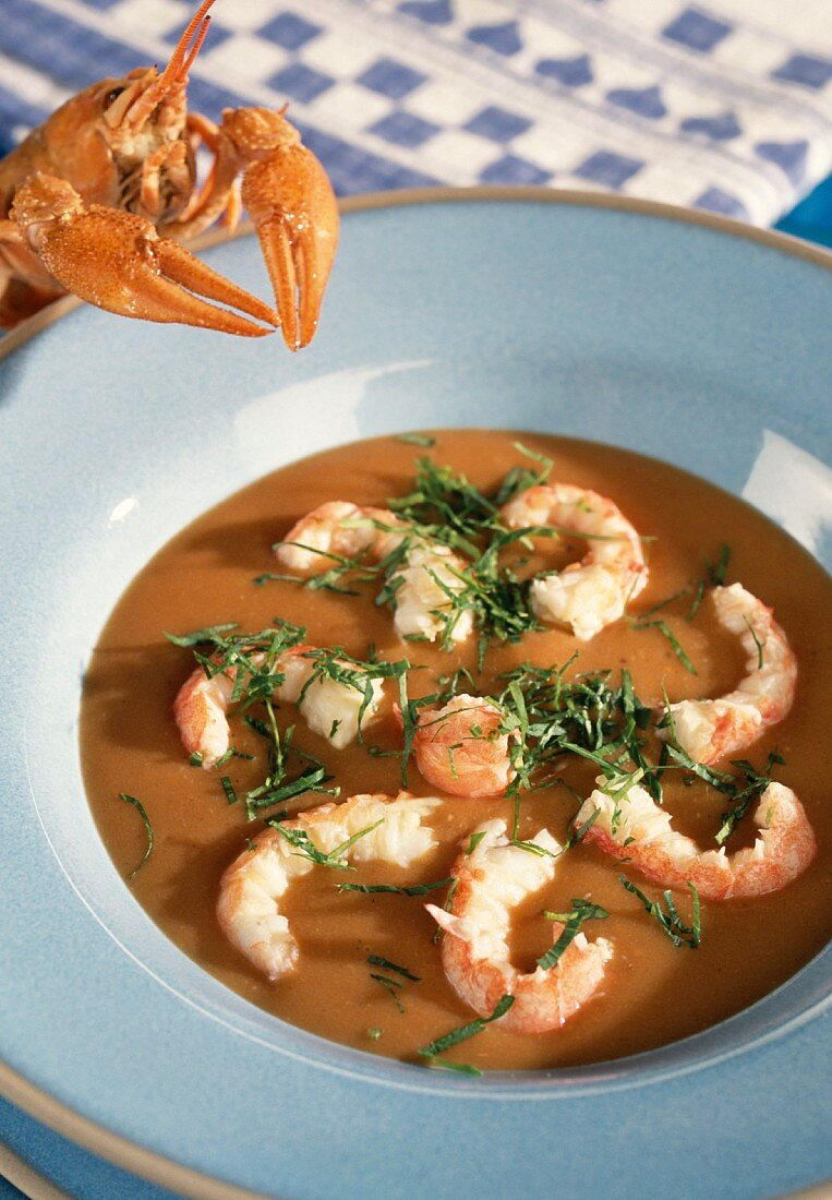 Bisque with prawns
