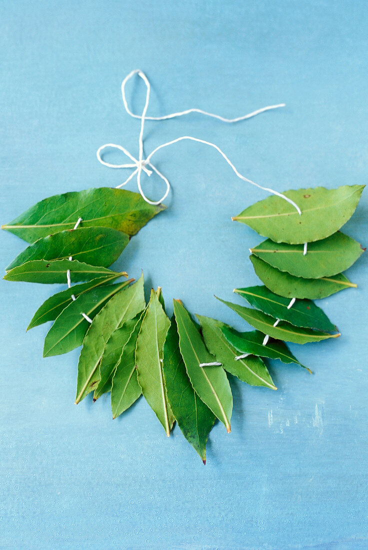 Necklace of bay leaves