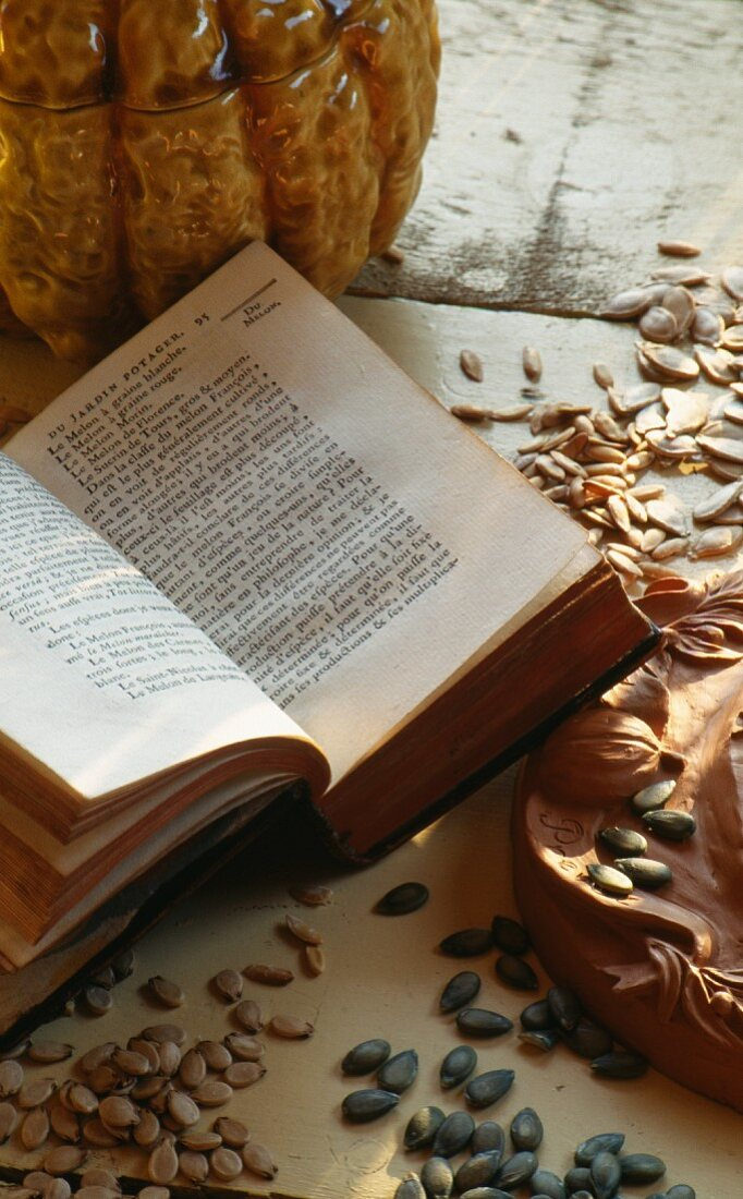 Melon seeds and book