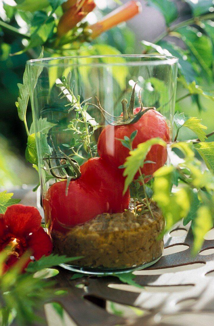 Verrine of tomatoes and eggplant caviar