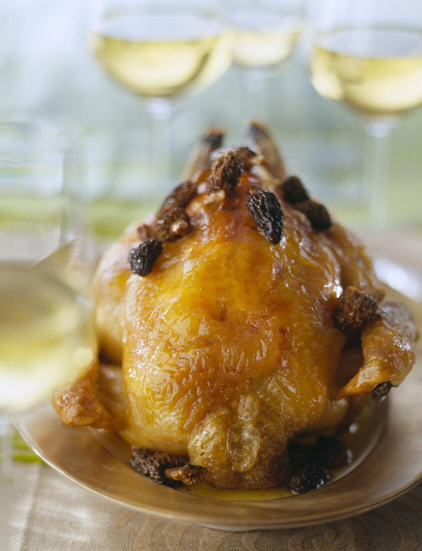 Chicken in creamy morel sauce