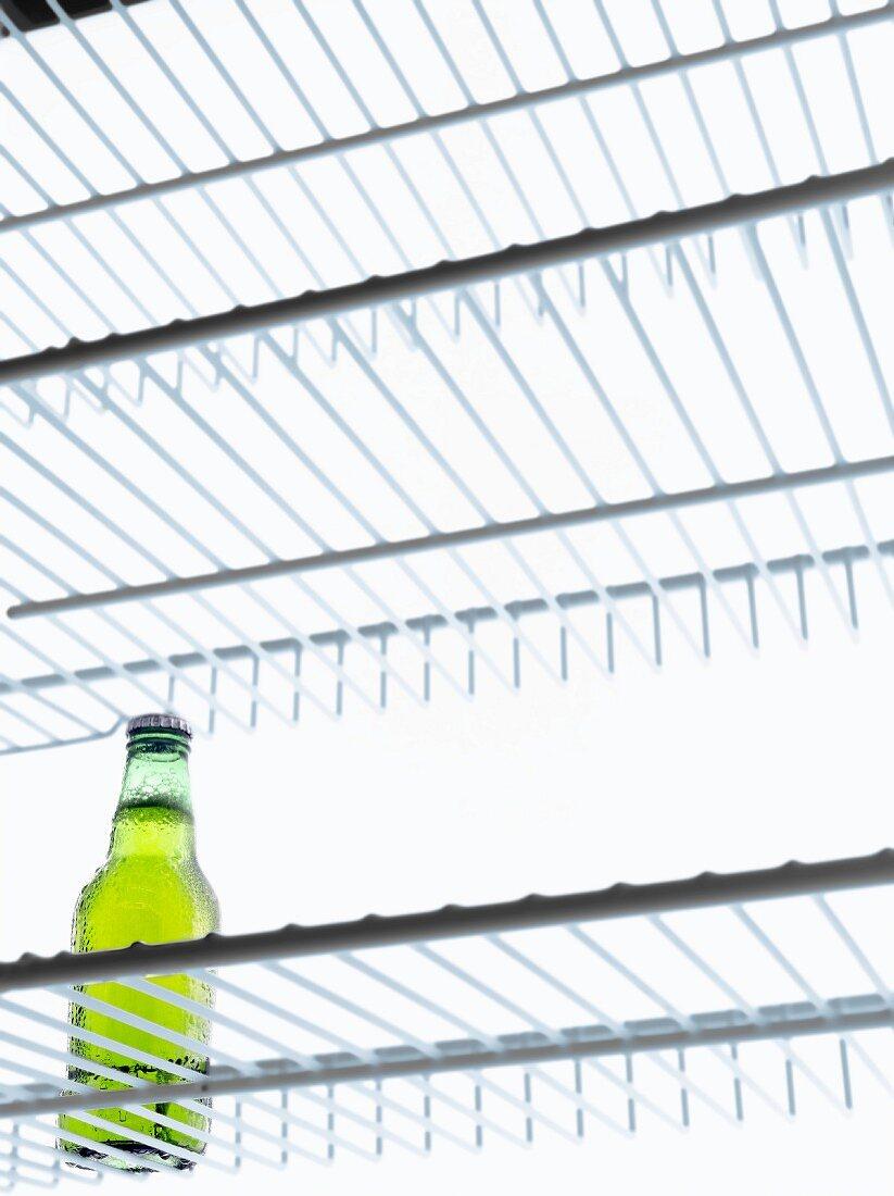 Eine Flasche Bier im Kühlschrank