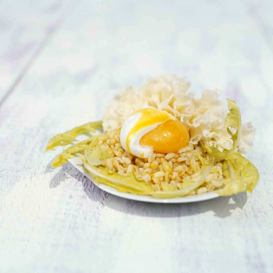 Wheat salad with dandelions, a soft egg and tete-de-Moine cheese