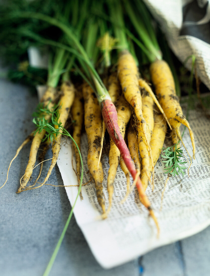 Yellow carrots from the Doubs