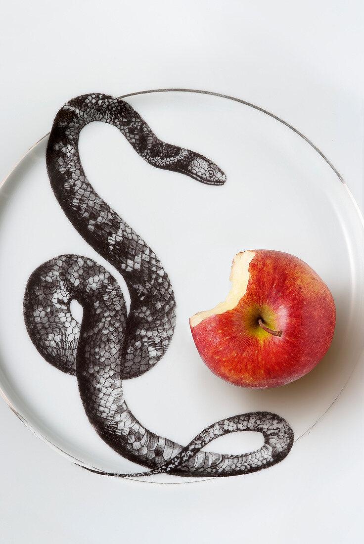 Temptation fruit : snake and apple