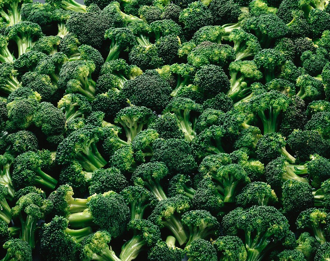 Overall of broccolis