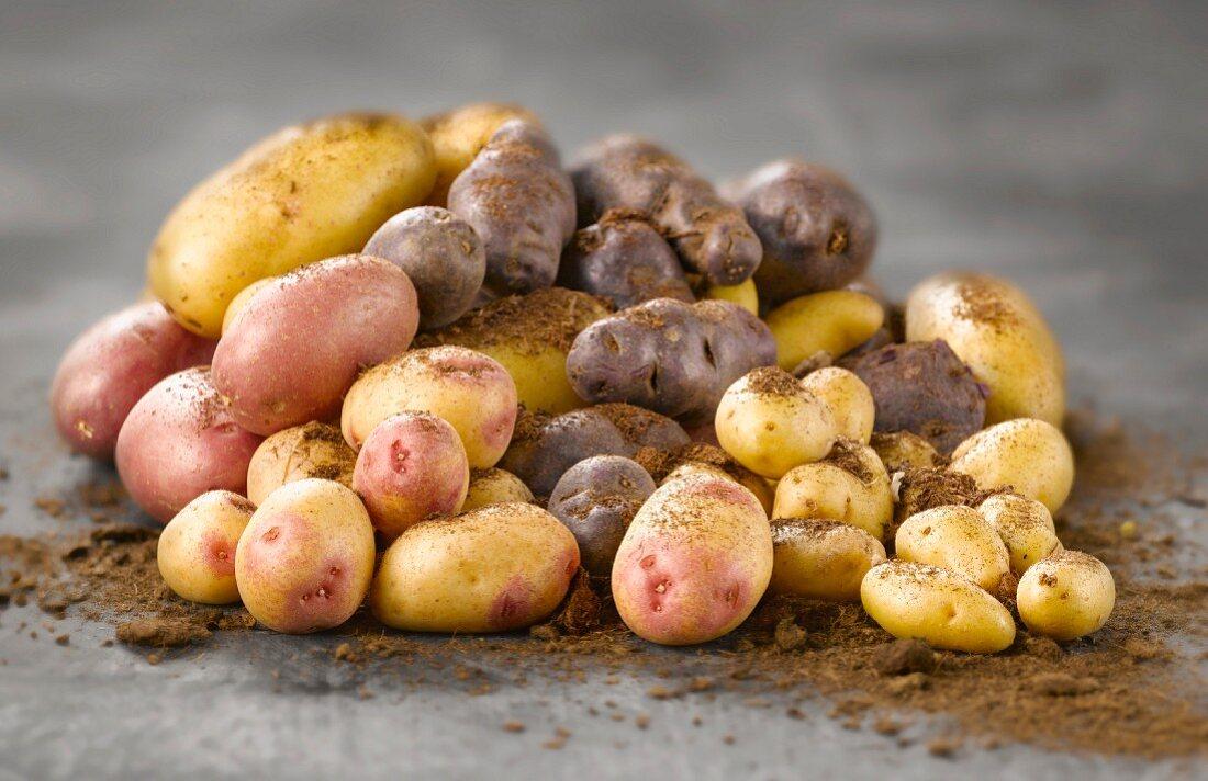 Heap of potatoes