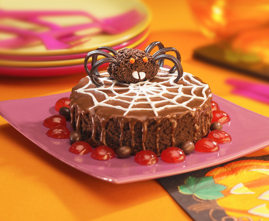 Chocolate cake decorated with a spider and it's web