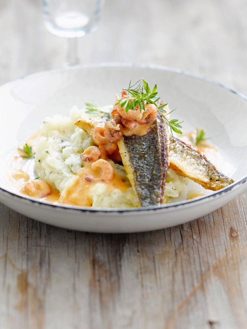 Sea bream fillets with shrimps and cauliflower puree