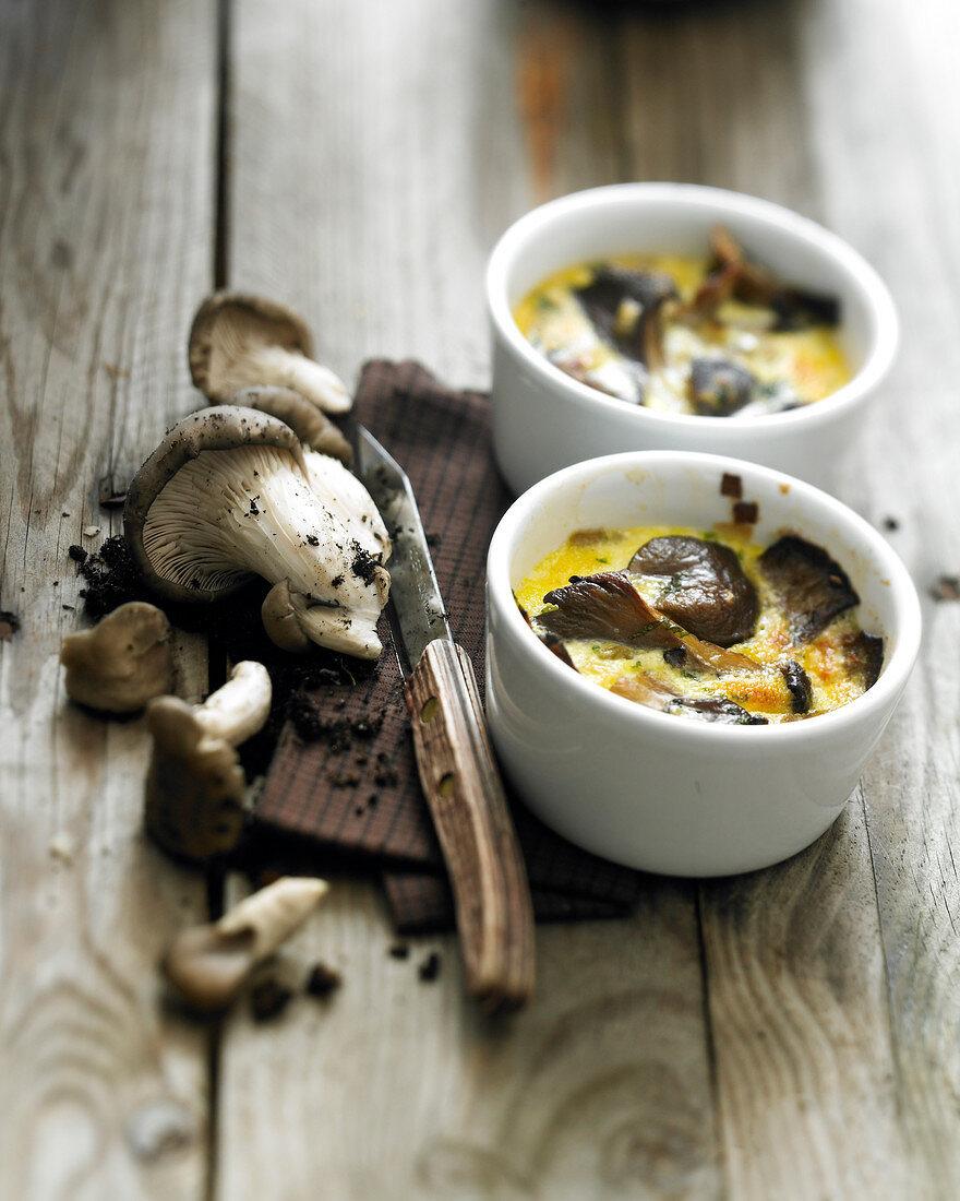 Pleurotus mushroom Flans