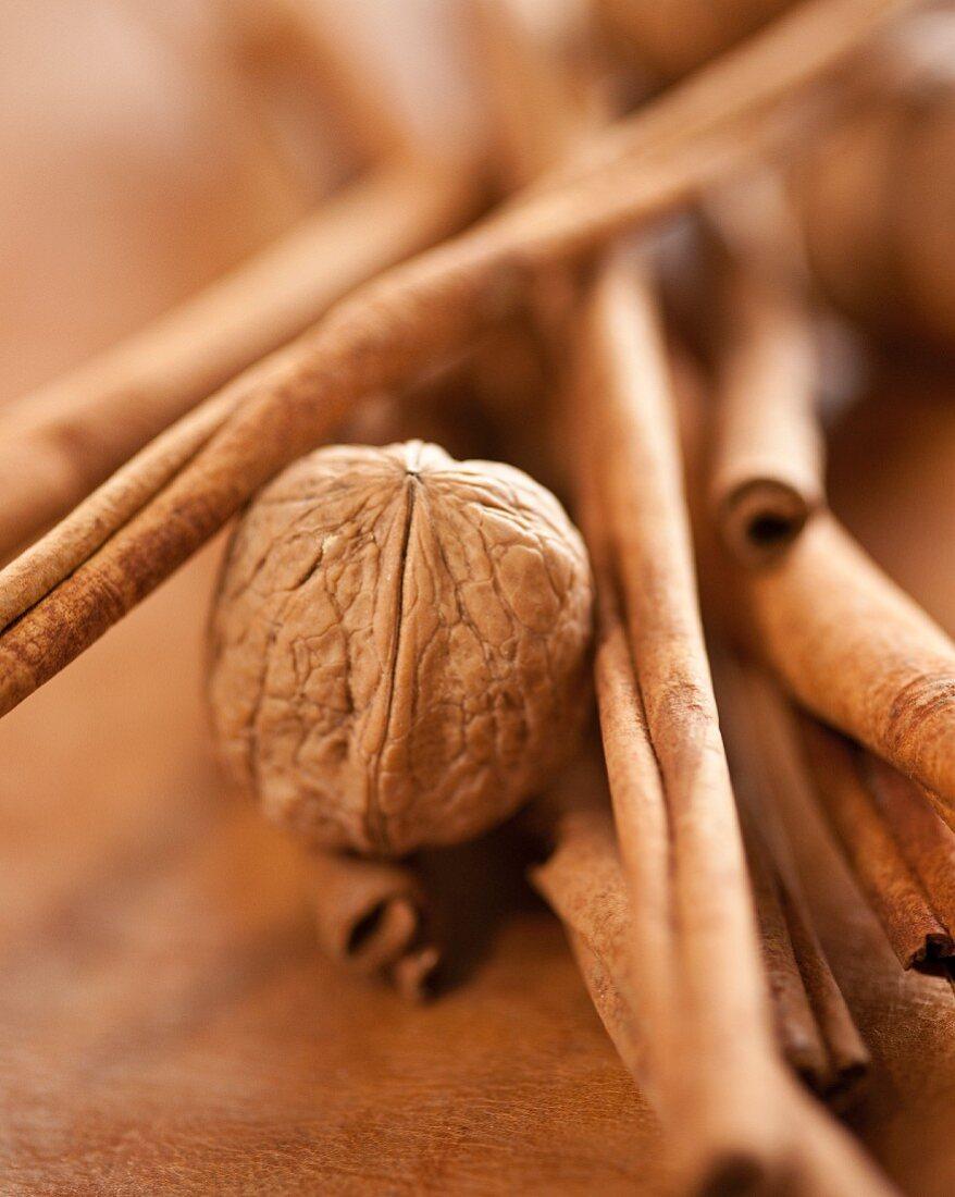 Cassia and walnut