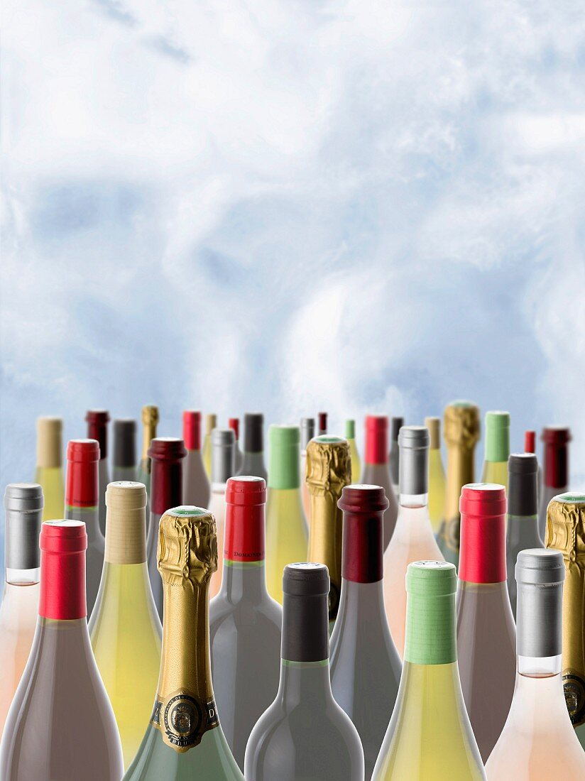 Bottles of wine on a sky background