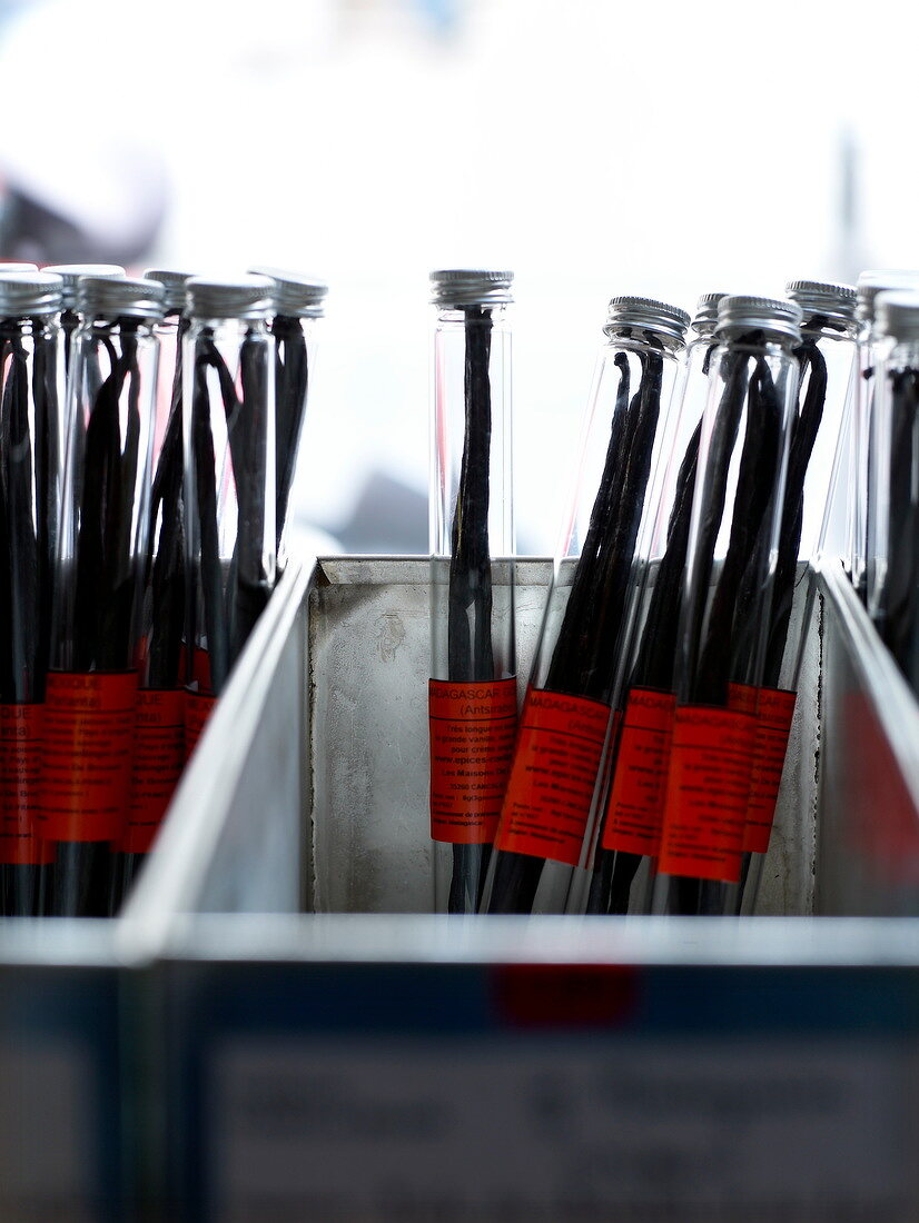Test tubes of vanilla pods from Madagascar
