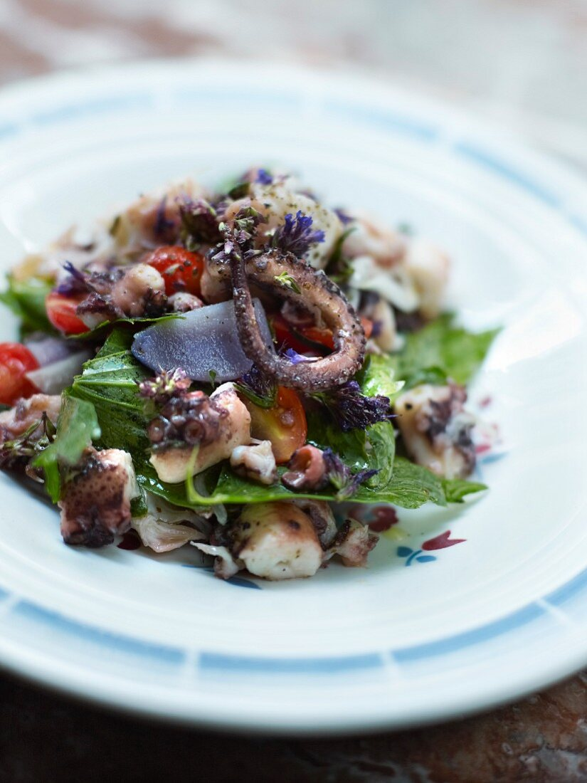 Octopus and purple potato salad with herbs