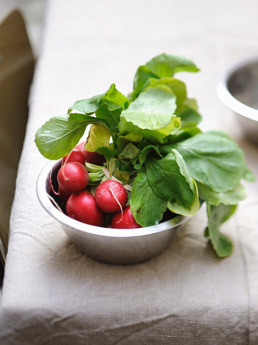 Bunch of round pink radishes