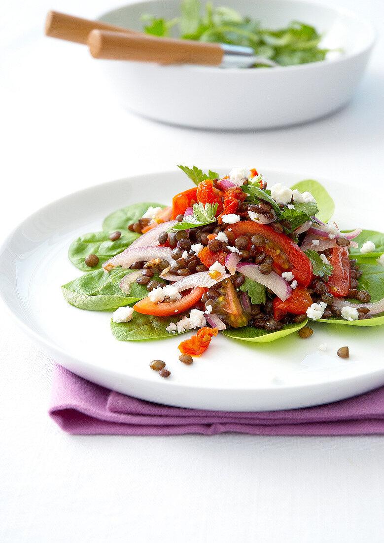 Lentil,tomato,feta,onion and spinach salad