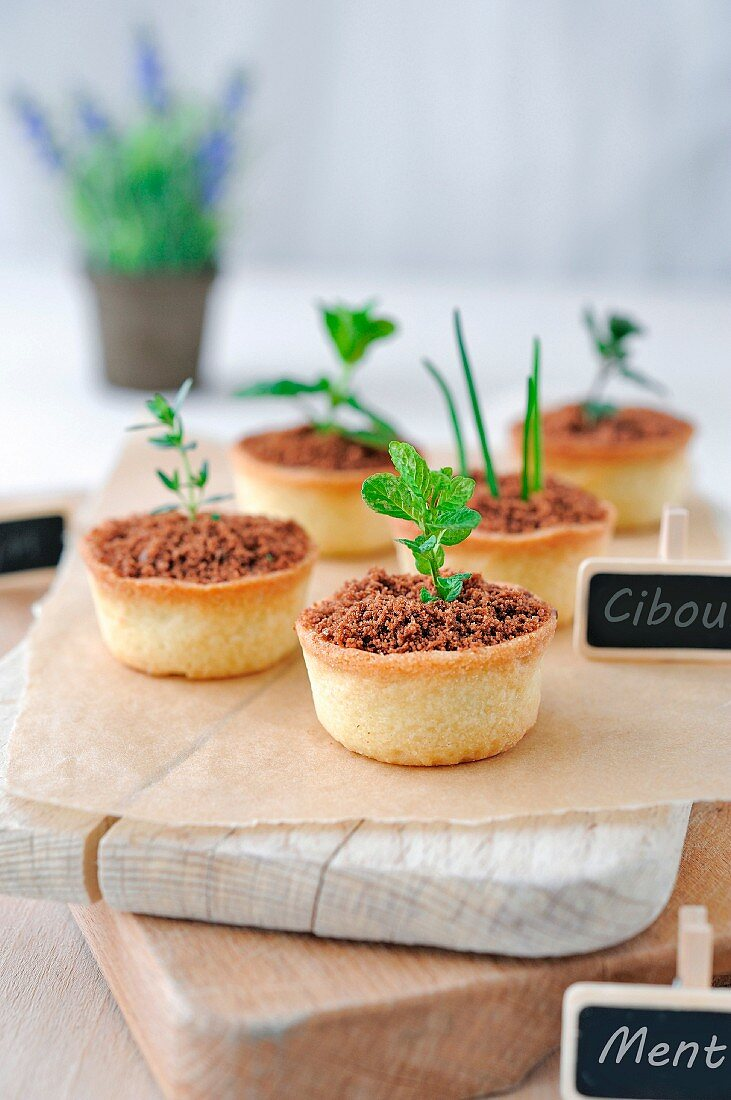 Individual meat and herb pies and a flower pot