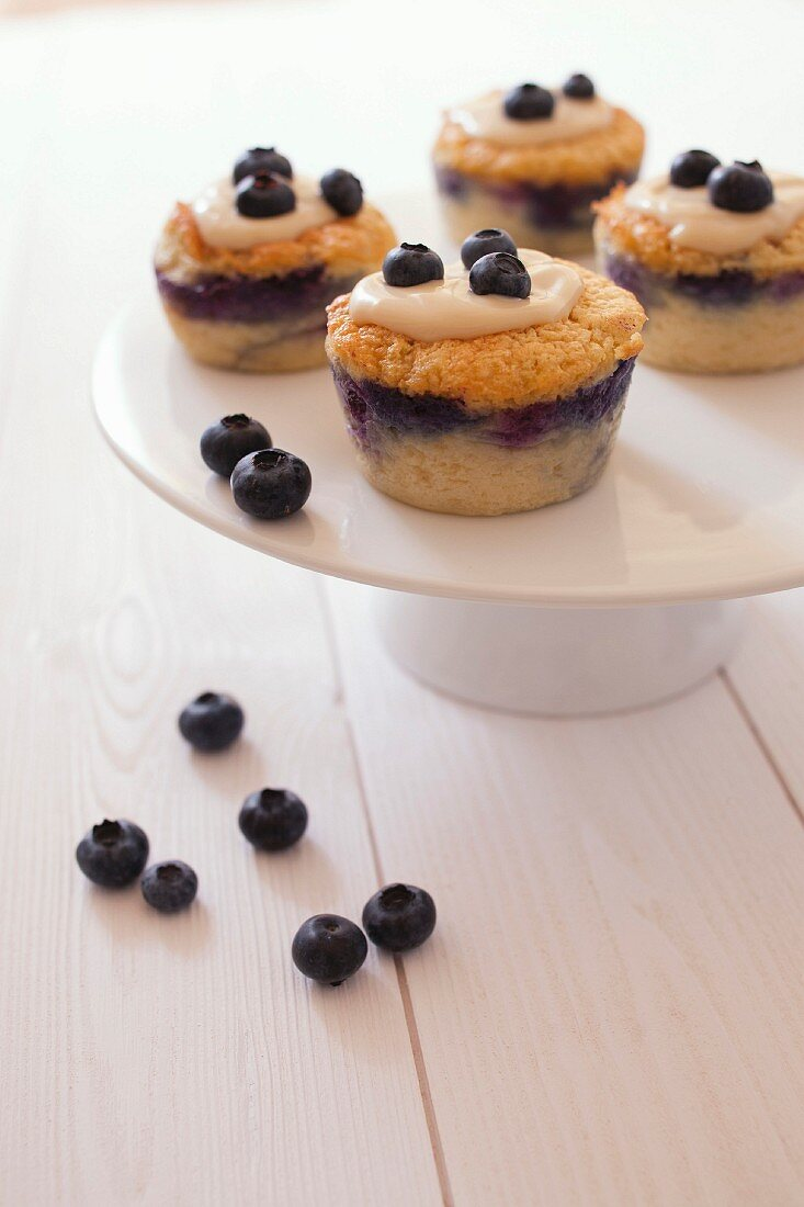 Magic blueberry cupcakes