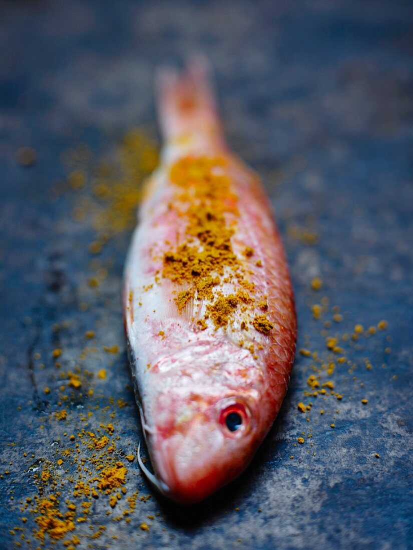 Raw red mullet sprinkled with ground colombo