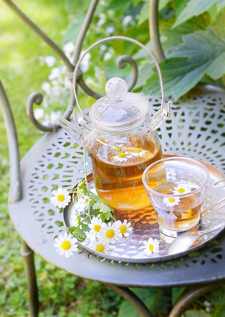 Camomile Infusion Outdoors