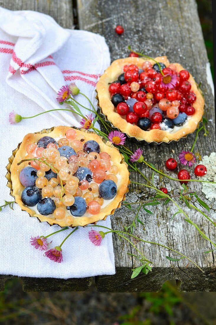 Redcurrant-Blueberry Tartlets Outdoors