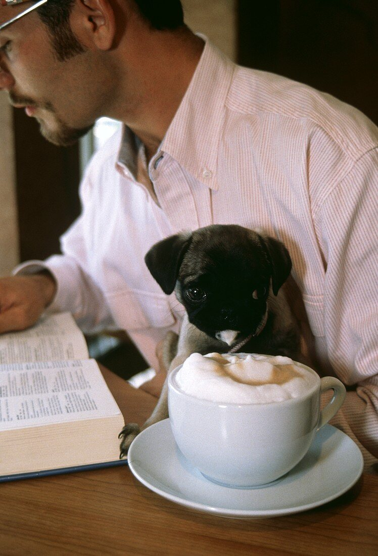 Cup of Capuccino with Puppy and Man reading