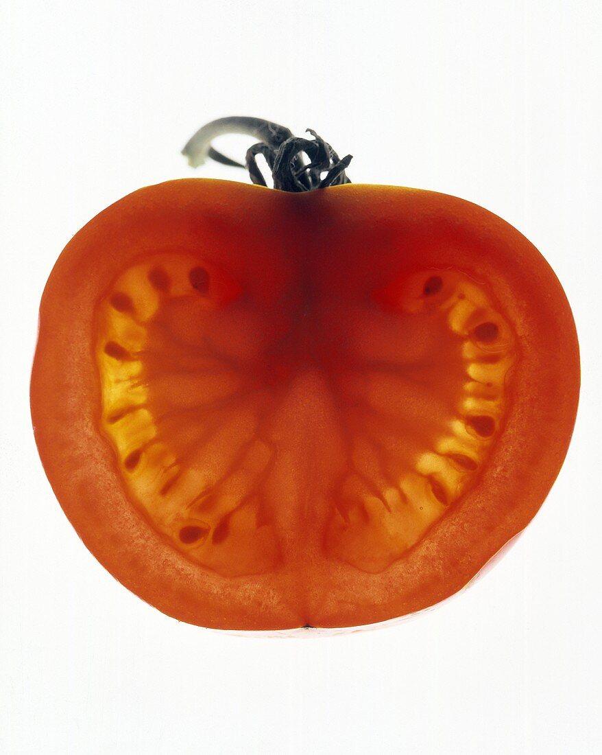 Tomato Half (Backlit)