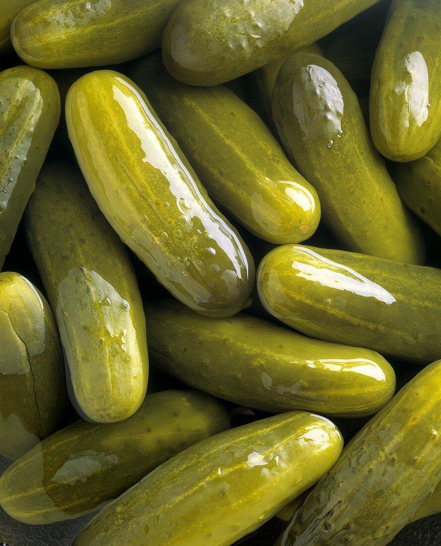 Pickles in a Barrel; Close Up