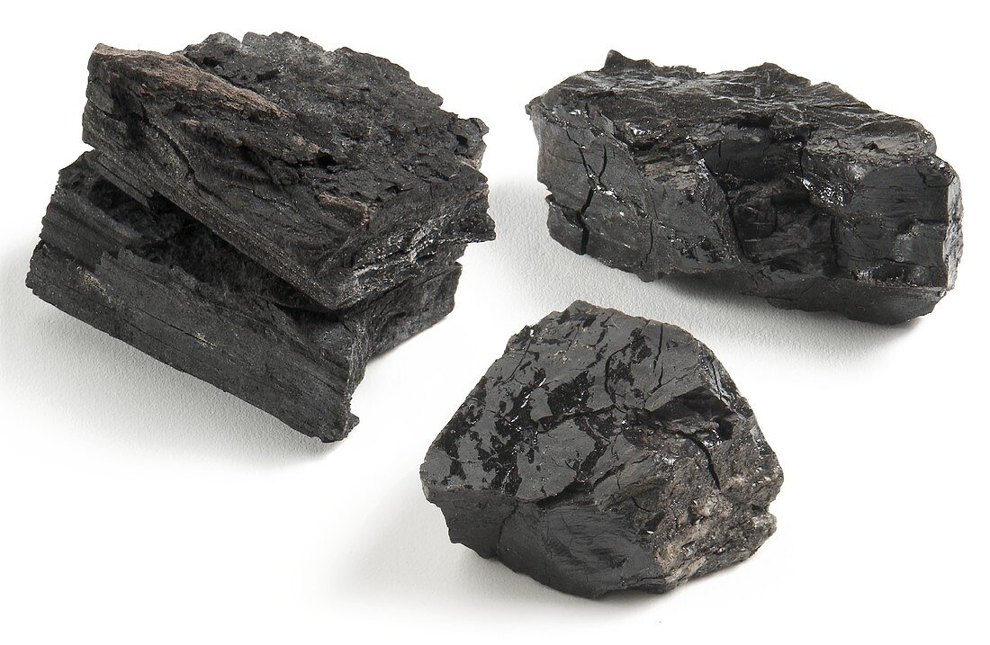 Pieces of charcoal