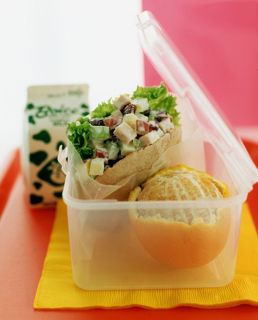 Child's Lunch with Chicken Salad Pita, an Orange and Milk