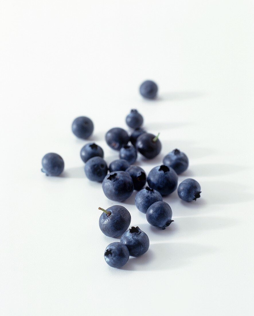 Blueberries on a White Background (Soft Focus)