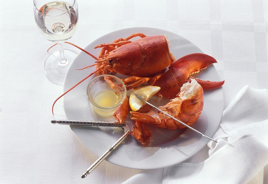 Lobster Body Tail and Claw on a Plate with Lemon