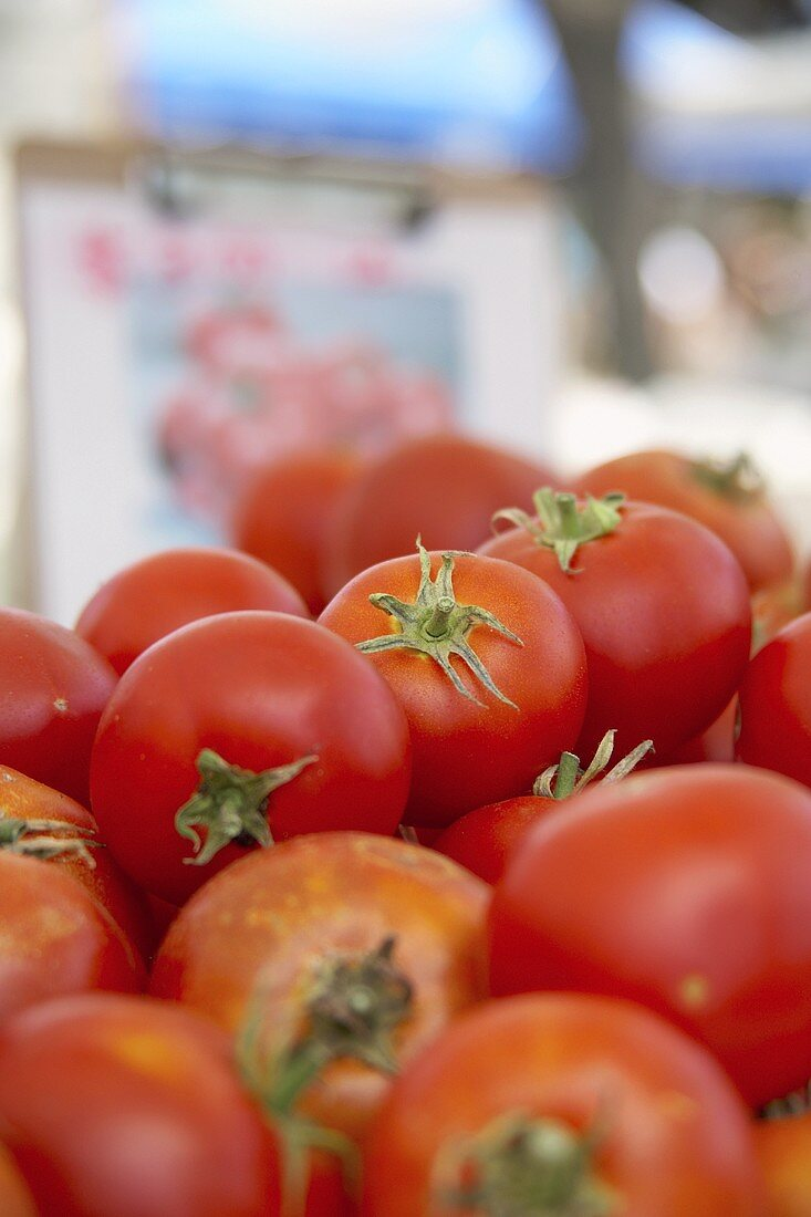 Many fresh tomatoes on a market stall