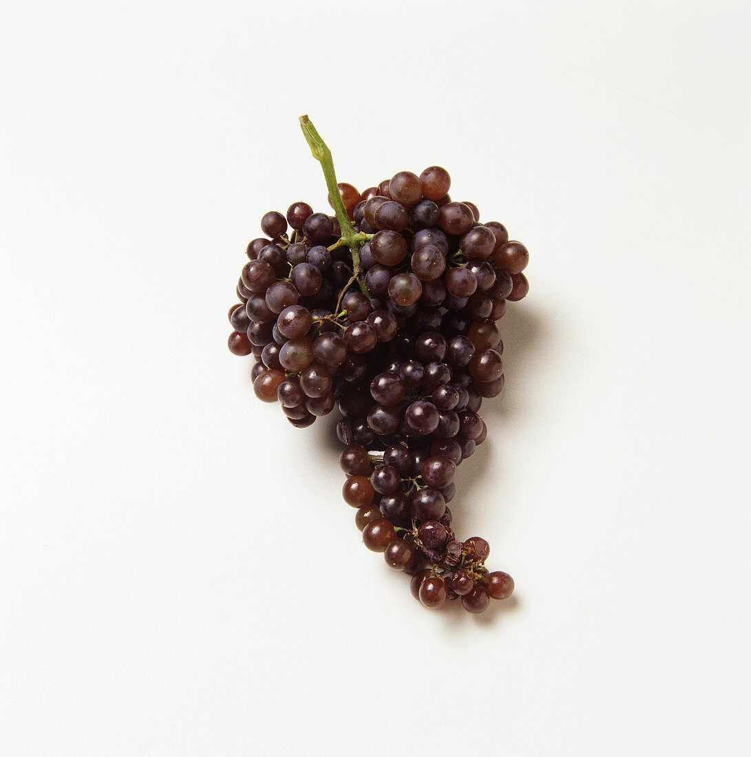 Fresh Bunch of Red Grapes on White Background