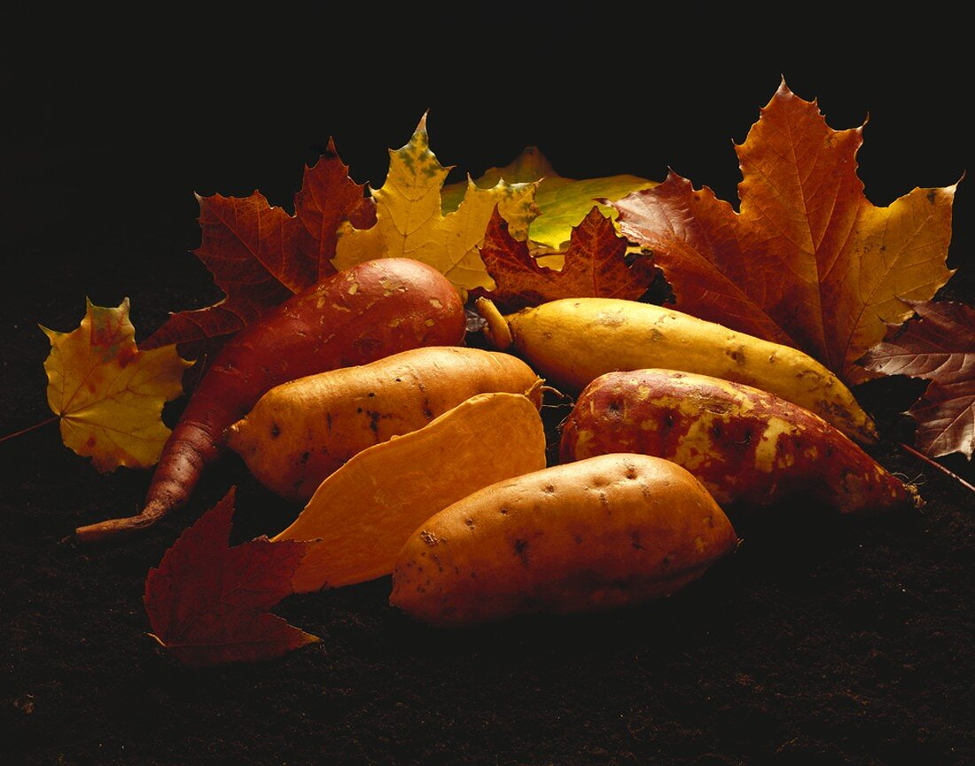 Assorted Sweet Potatoes with Autumn Leaves