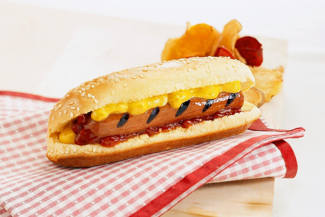 Grilled Hotdog on a Bun with Mustard and Ketchup