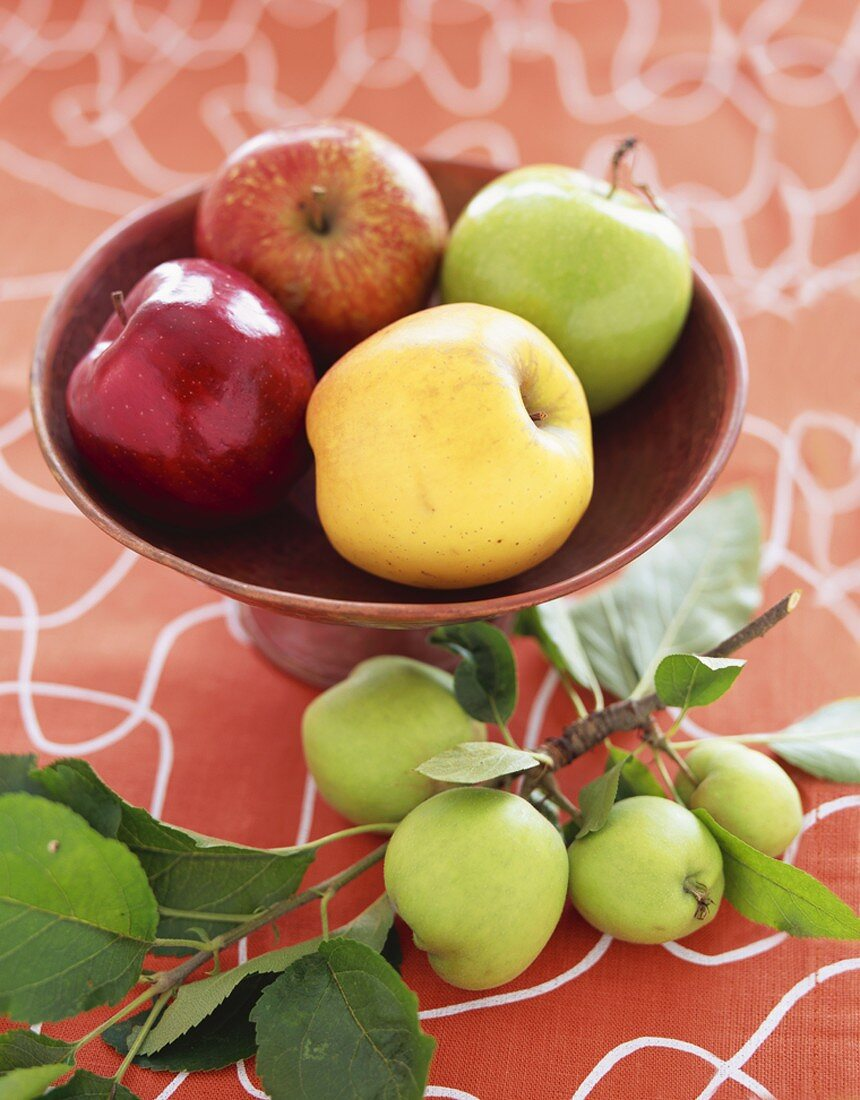 A Variety of Apples in a Wooden Pedestal Dish, Crab Apples with Branch on the Side