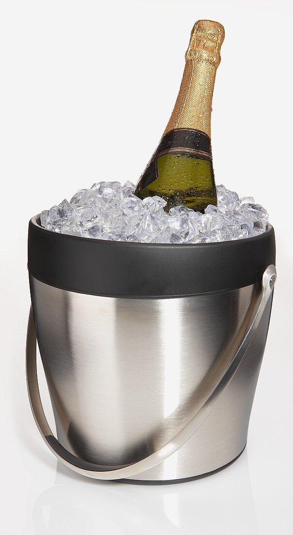 An Ice Bucket with a Bottle of Champagne