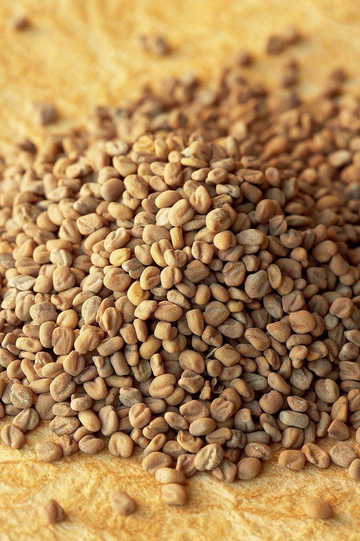 Pile of Fenugreek Seeds