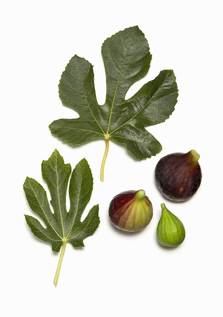 Whole and Peeled Figs with Fig Leaves on White Background