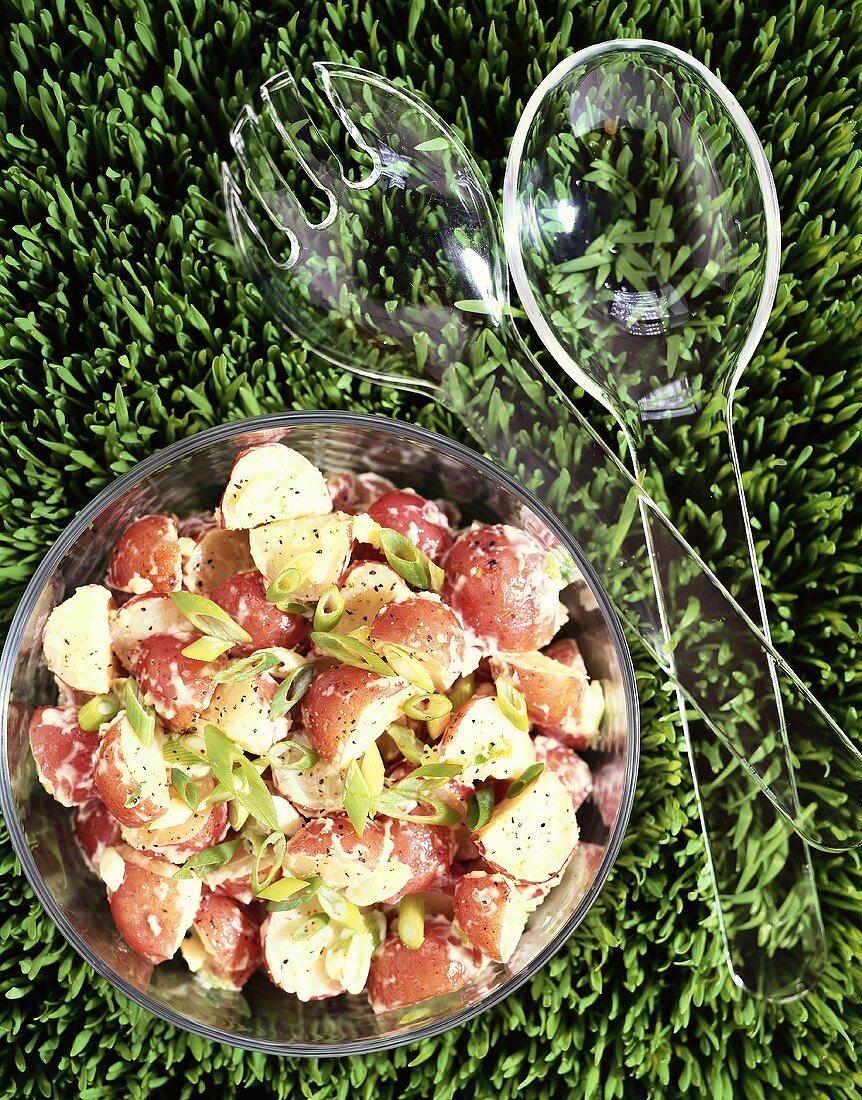 Overhead of Red Potato Salad with Plastic Salad Servers on Grass