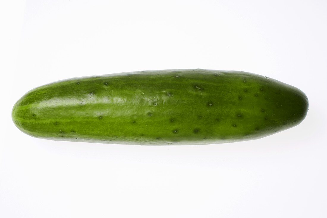 Single cucumber on white background