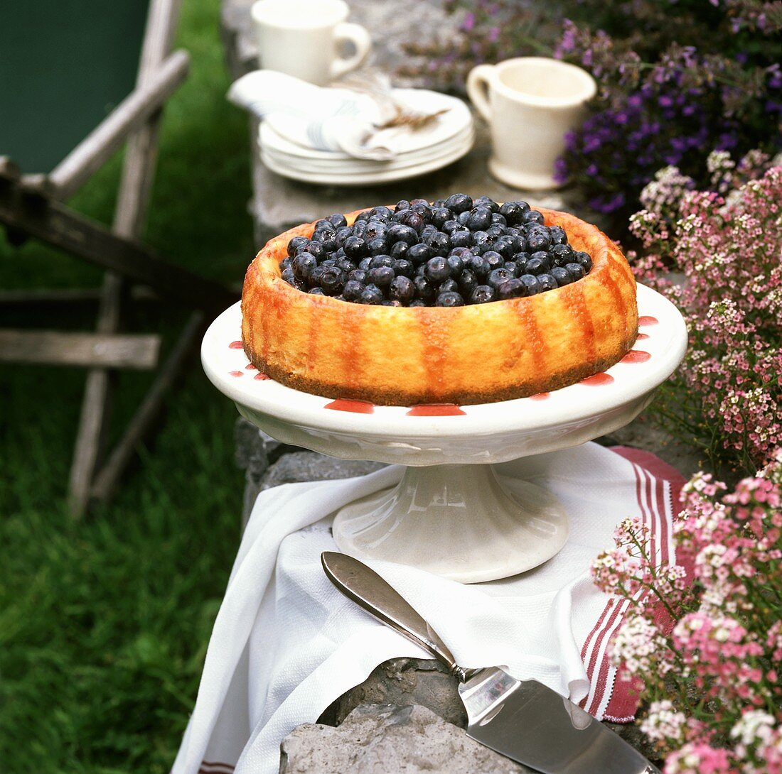 Blueberry flan on table in garden